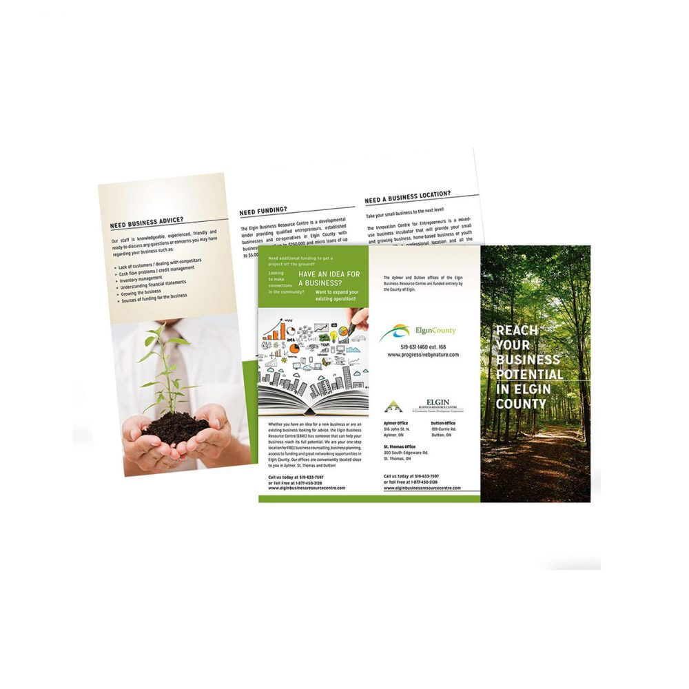 Blackcat Concepts Web Design Graphic Design - County of Elgin Brochure